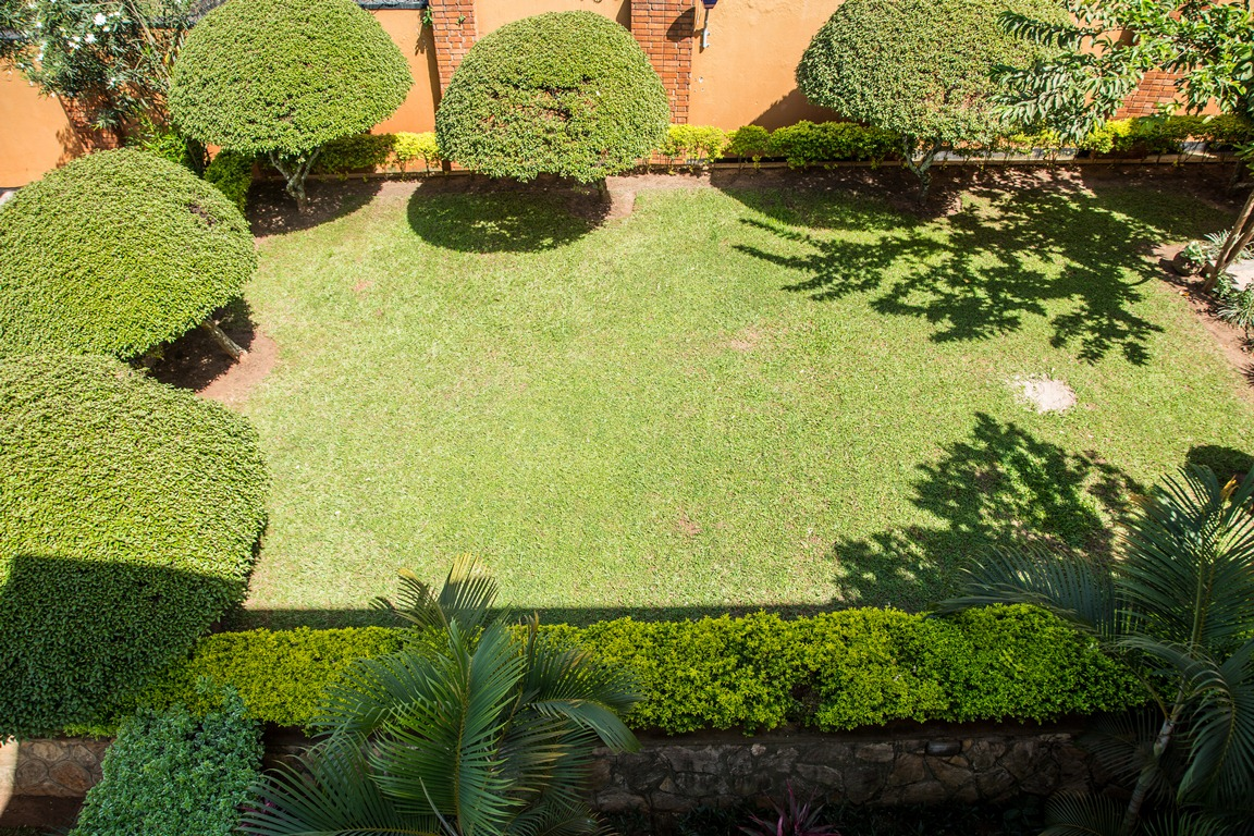 The greenery at Adonai Guesthouse in Muyenga, Kampala