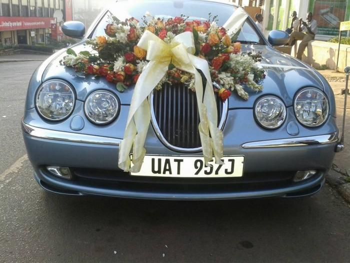 A classic Jaguar from Jaguar World Services